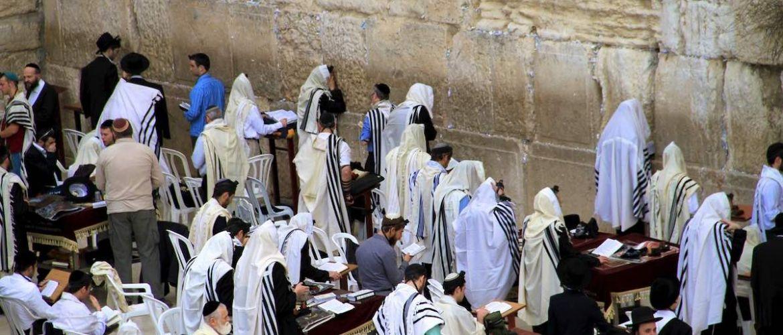 """Vrijheid moet invulling hebben en de invulling voor het Joodse volk is de Thora. Alleen door deThora na te leven kan de bevrijding zoals die tijdens Pesach gevierd wordt op een goede manier gestalte krijgen. Pas dan kan de vrijheid die G'd geschonken heeft op een juiste manier beleefd worden. De nieuwe traditie: Bezoek aan de Kotel (Klaagmuur) tijdens Sjawoe'ot In 1967 eindigde de Zesdaagse oorlog vlak voor Sjawoe'ot. Israël herkreeg de Westelijke muur van de vroegere Tempel [de """"klaagmuur""""] en voor het eerst sinds 20 jaar konden Joden weer hun meest heilige plaats bezoeken. Op Sjawoe'ot zelf werd de Muur opengesteld voor bezoekers en op die gedenkwaardige dag maakten meer dan 200.000 Joden een voettocht naar de Muur (in Jeruzalem rijden op Sjabbatot en Joodse feestdagen geen auto's of bussen). In de daar opvolgende jaren werd deze """"pelgrimstocht"""" een vaste traditie. Vroeg in de ochtend op Sjawoeot, na een hele nacht Thora geleerd te hebben, vullen de straten van Jeruzalem zich met tienduizende Joden die naar de Muur wandelen. Deze traditie heeft zijn oorsprong in de Bijbel. Sjawoeot is een van de drie Joodse pelgrim-feesten, waarop in de tijd van de Tempel de hele bevolking uit het hele land te voet naar de Jeruzalem kwam om daar Tora te leren en het feest te vieren."""